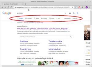 M5 google vyhladavanie panel.png